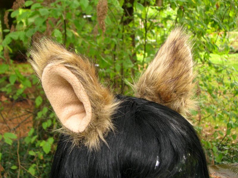 clip on ears